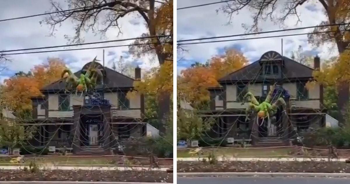 Американец украсил дом к Хеллоуину огромным пауком, ползущим по паутине. И видео его спуска восхищает и пугает