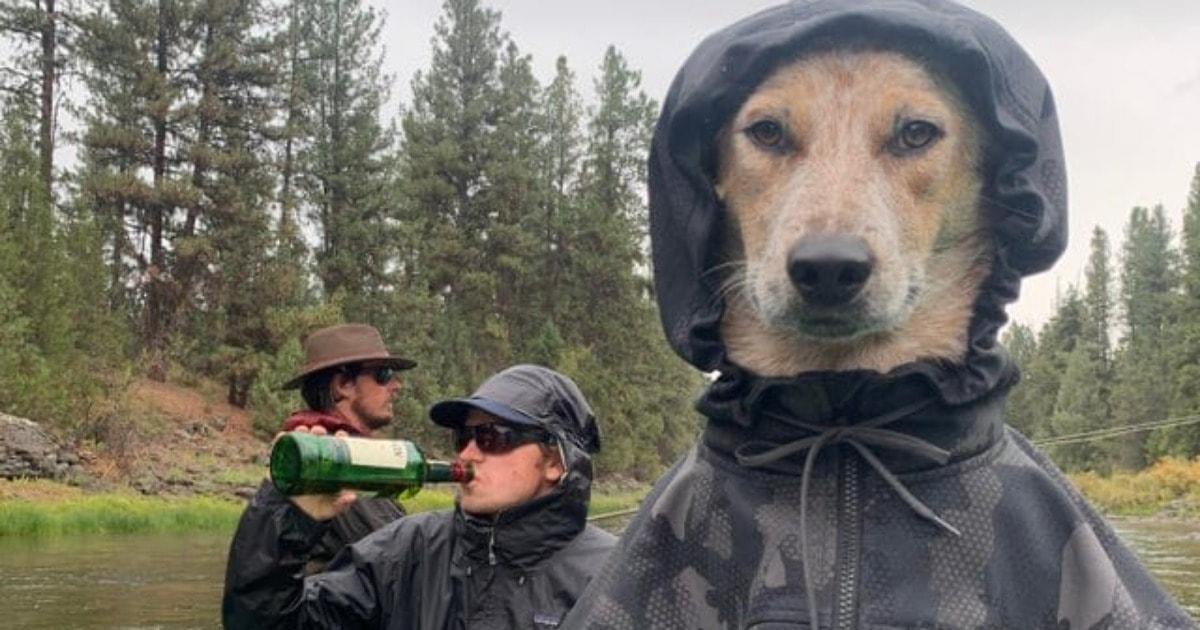 Атмосферный снимок троицы на рыбалке с участием пса в куртке с капюшоном превратился в крутой фотошоп-баттл