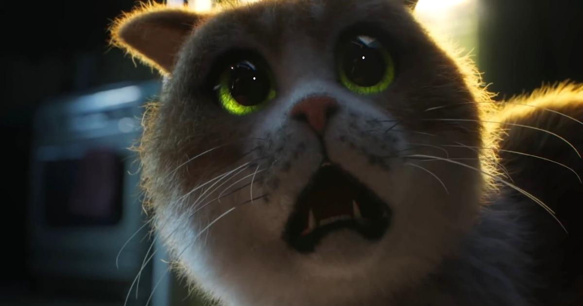 В сети появился первый в мире ужастик для котов. В нём показан их самый главный страх