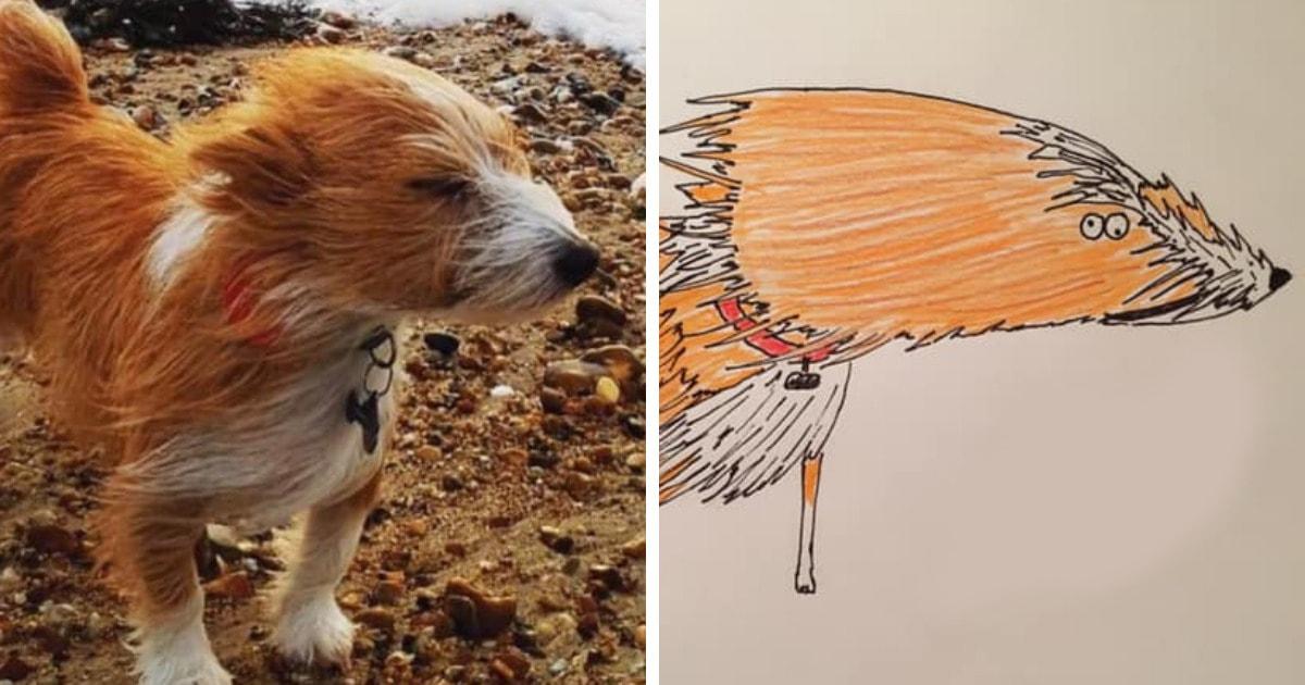 26 портретов животных от британца, который не умеет рисовать, но всё равно создаёт шедевры