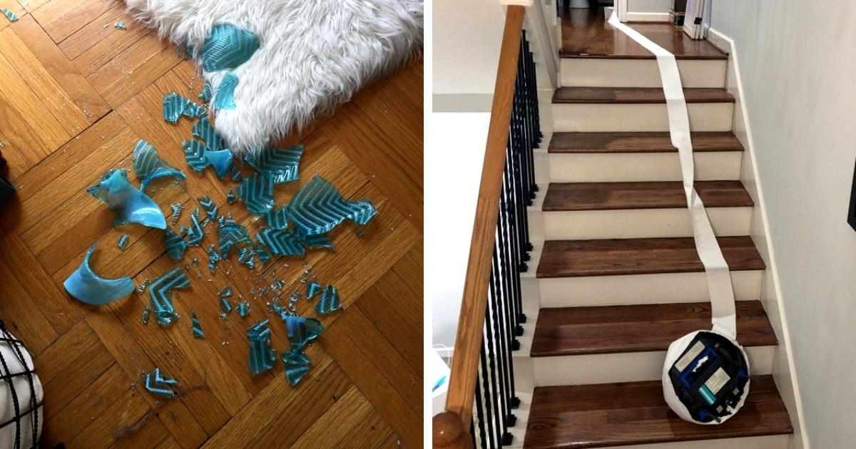 16 провальных случаев, когда желание навести порядок в доме обернулось полным фиаско