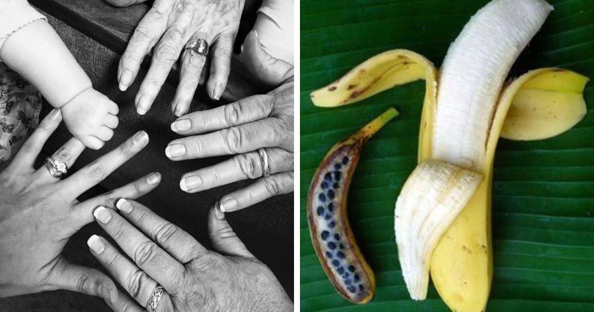 20 крайне любопытных фотографий, которые доказывают, что всё в этом мире познаётся в сравнении