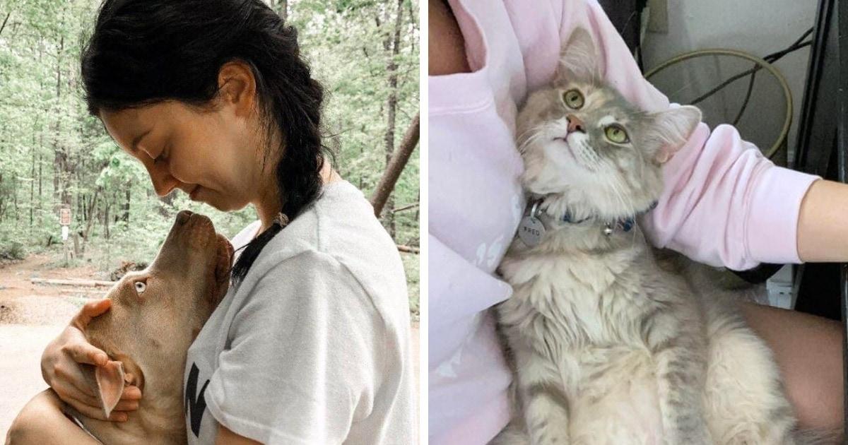 19 кошек и собак, которые смотрят на людей с такой любовью, что их взгляд попадает в душу