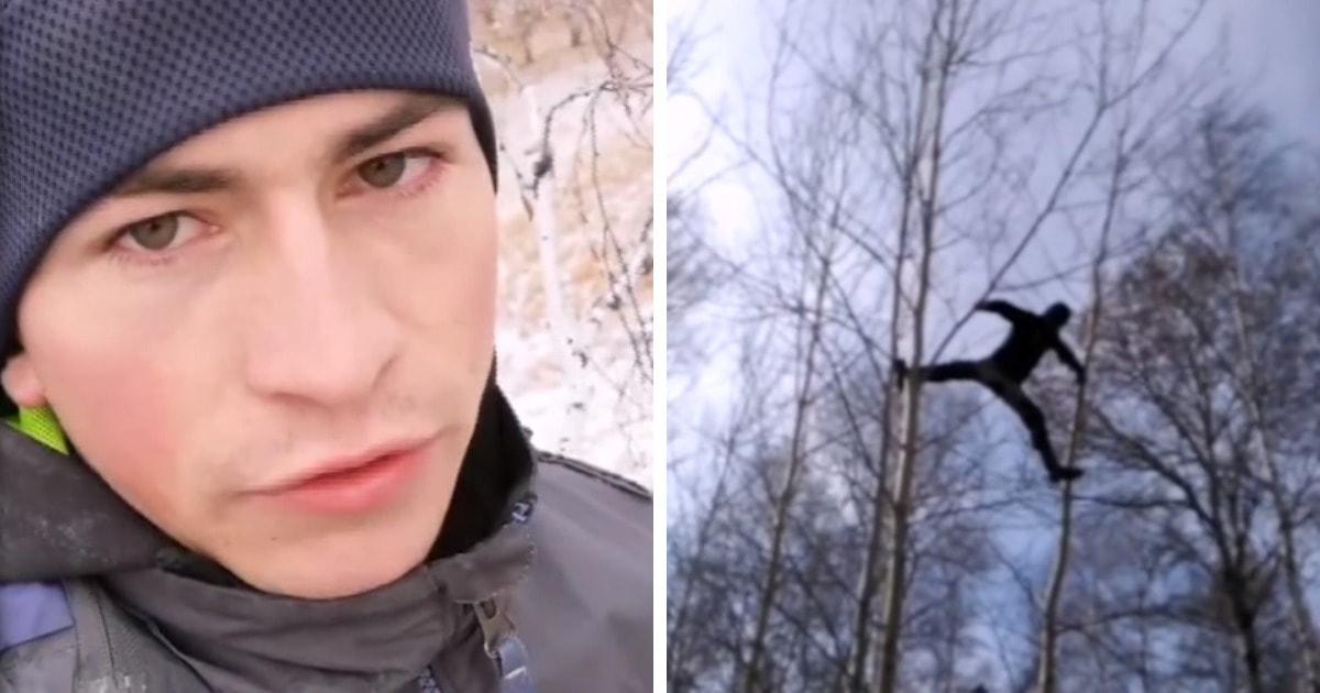 Студент из Омска залезал на берёзу, чтобы посещать занятия онлайн. Помочь решить проблему вызвался сам TikTok