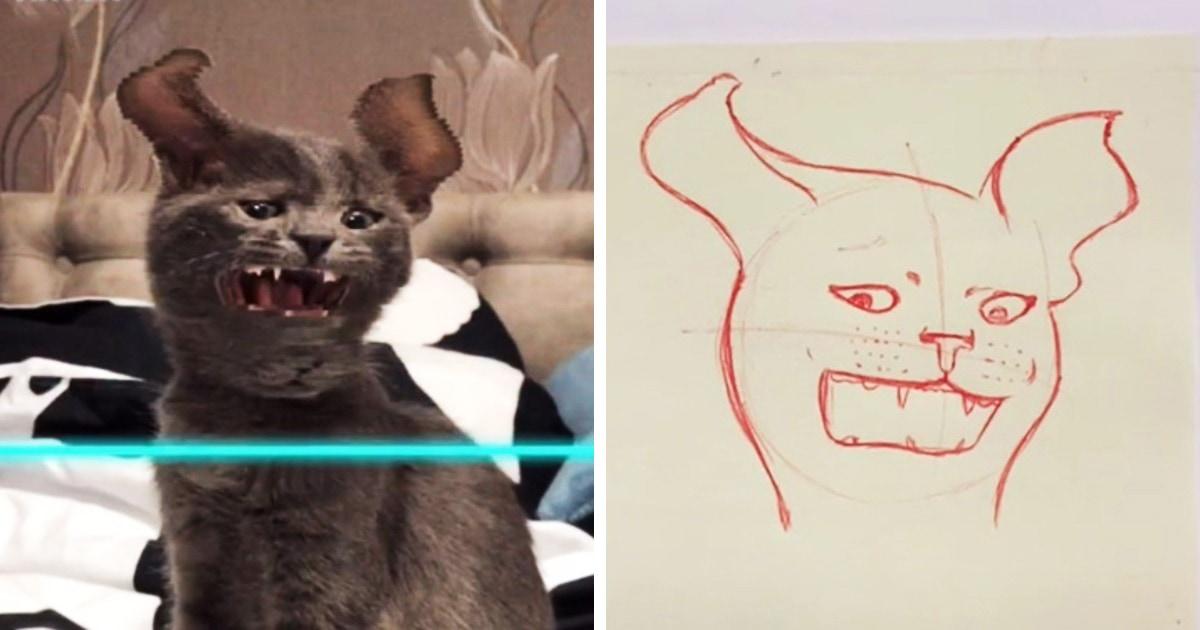 Девушка рисует смешные портреты котов по видео. Хозяева снимают их с фильтром, а она превращает это в шедевры