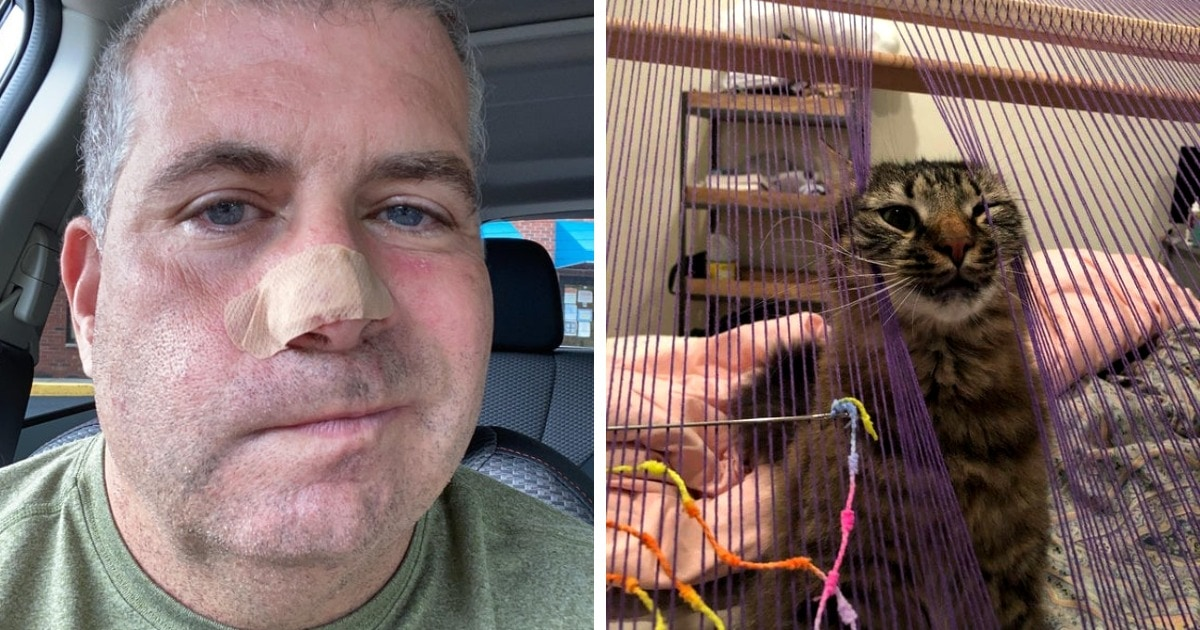 19 случаев, когда коты показали хозяевам, что мурлыкать они хотели на все их человеческие правила