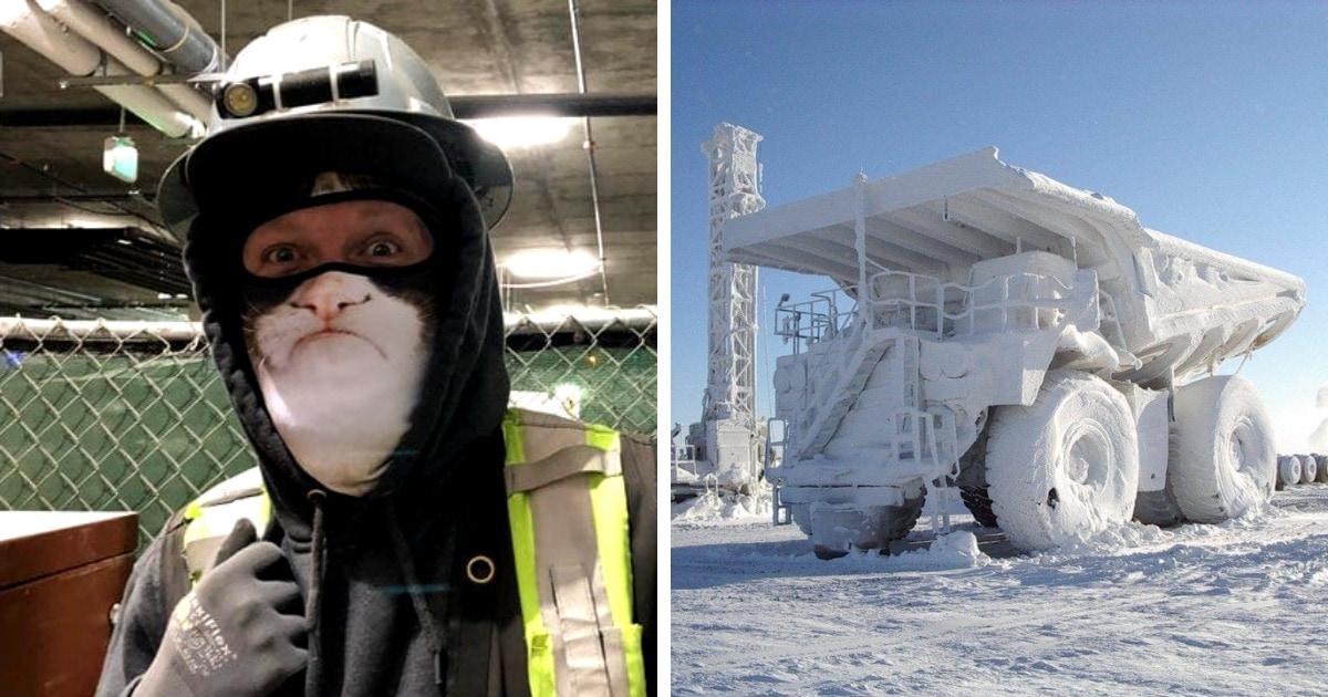 18 ледяных фотографий, которые во всей красе показывают, что с морозом шутки плохи