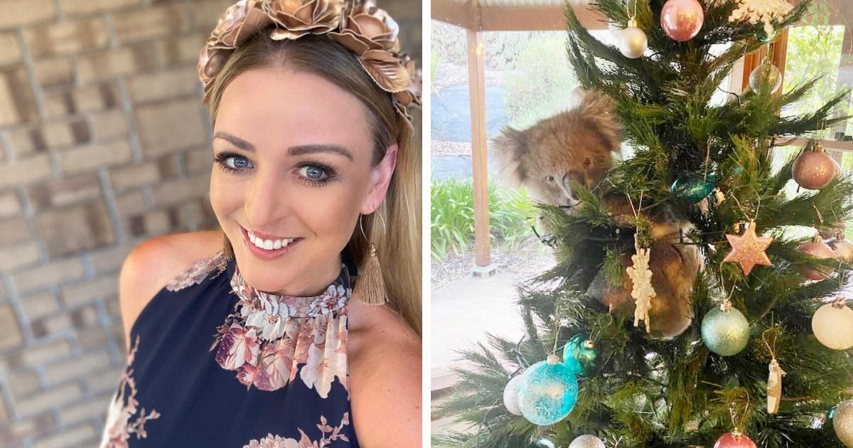 В дом австралийки пробралась коала и залезла на новогоднюю ёлку. И снять её оттуда оказалось не так просто!