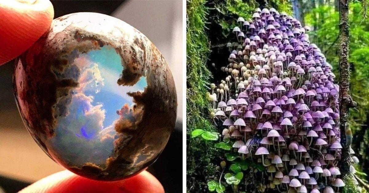 19 фотографий, которые доказывают, что природа — самый настоящий художник, которому нет равных