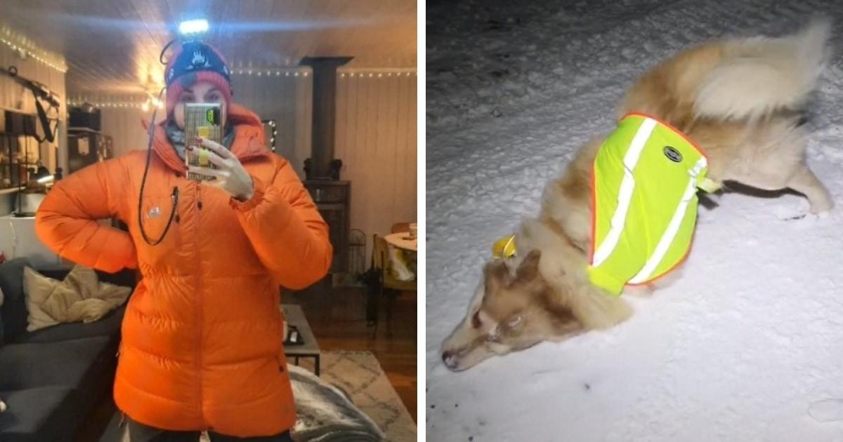 Девушка показала, как выгуливает собак в месте, где есть белые медведи. Каждая её прогулка — целая экспедиция