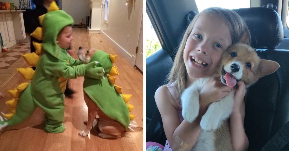 17 трогательных примеров дружбы детей и собак, которые растопят ваше сердце