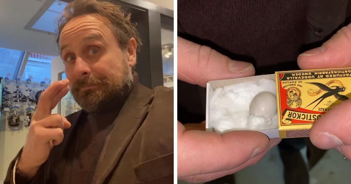 Мужчина нашёл крошечное яйцо в зоомагазине и решил его спасти. Наградой за его старания стал попугай-красавчик