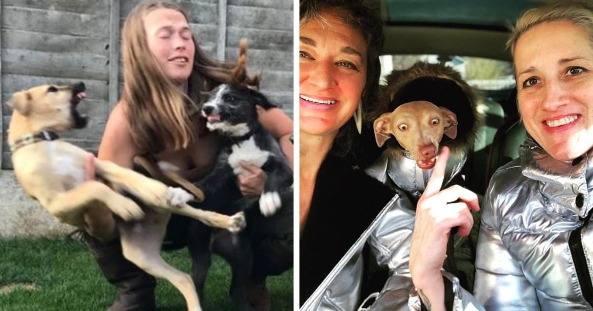 Пользователи сети решили показать семейные фото с собаками. И они любой снимок сделают незабываемым!