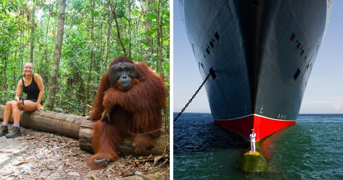 17 снимков со впечатляющими сравнениями, которые заставляют по-другому взглянуть на окружающий мир