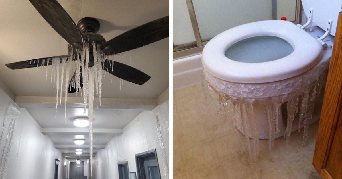 17 холодных фотографий из Техаса, где внезапно установились рекордно низкие температуры