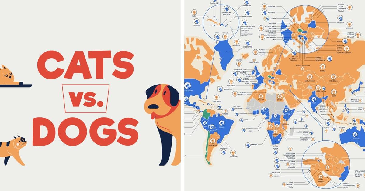 Кошки или собаки: исследователи подсчитали, кого больше любят в разных странах мира, и кто всё-таки популярнее