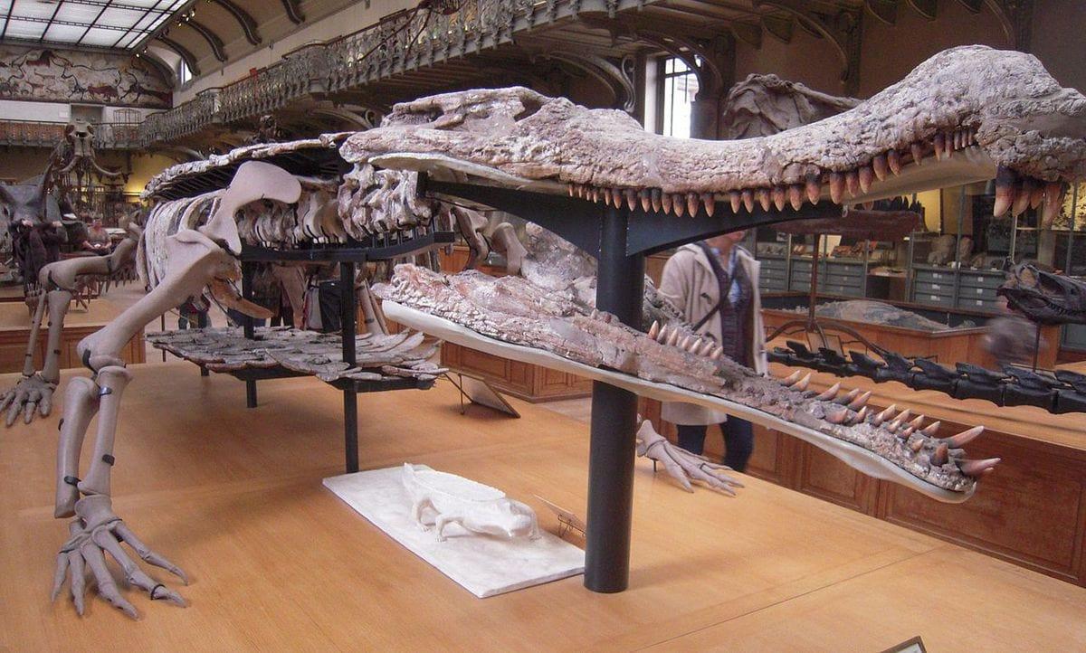 10 самых жутких доисторических чудовищ, которые сделали нам огромное одолжение тем, что вымерли