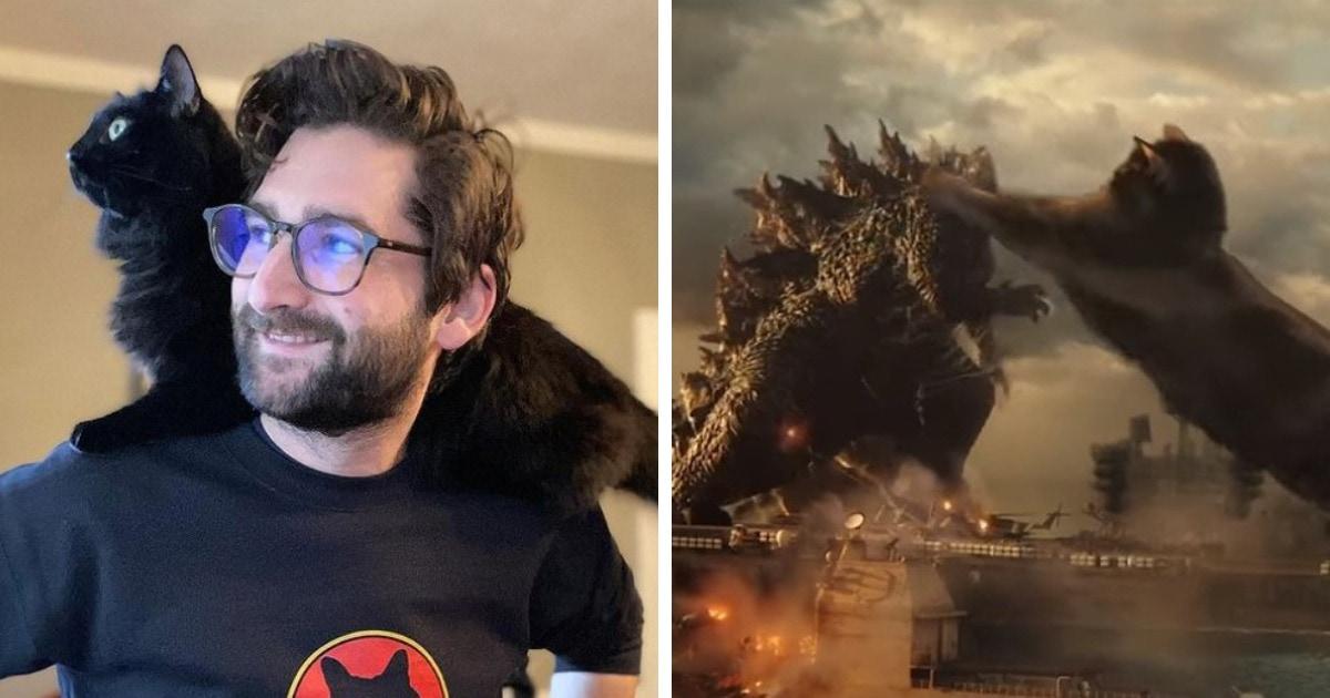 Годзилла против кошки: монтажёр заменил Конга на свою кошку и показал, как выглядело бы её сражение с ящером