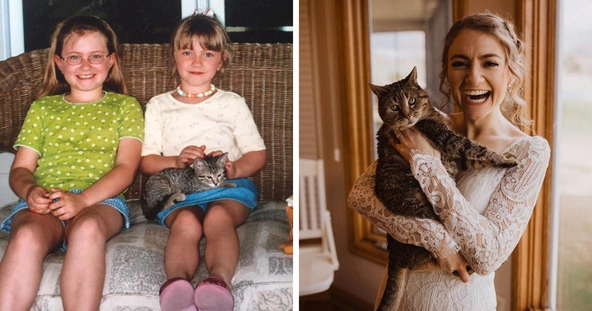 15 случаев, когда котята так быстро становились котами, что хозяева только успевали их фотографировать