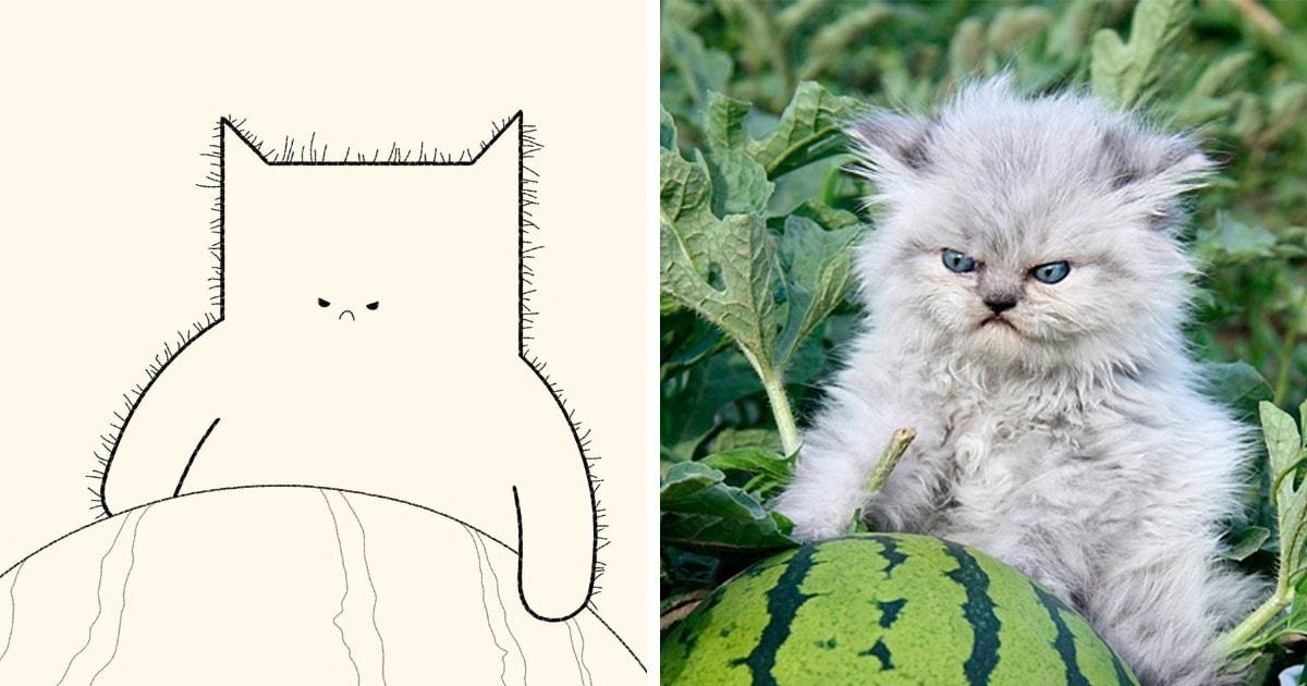 20 работ от художника, которые превращает мемные фотографии котов в ещё более смешные рисунки