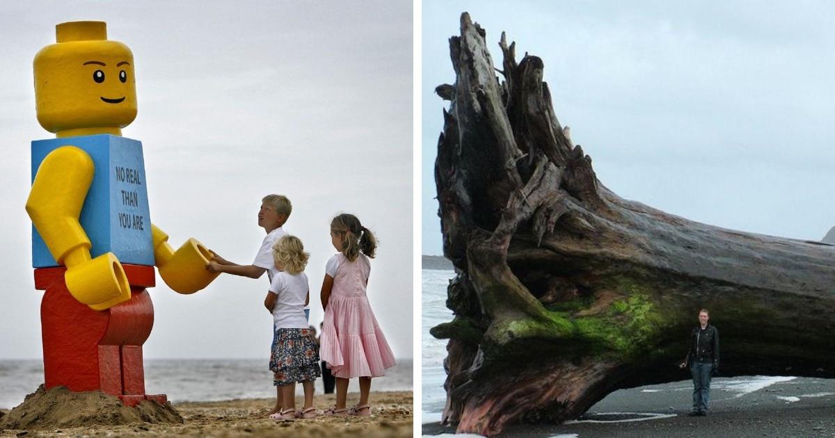 16 случаев, когда на пляже находили самые невероятные и непредсказуемые вещи, а не только ракушки и песок