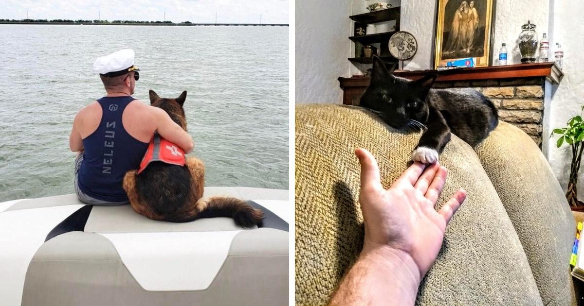15 умилительных снимков, которые громче любых слов скажут о крепкой дружбе между людьми и животными