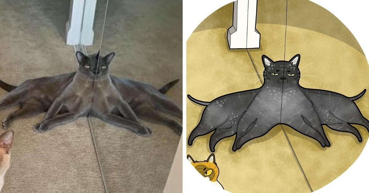 Художник из Индонезии перерисовывает мемы с котами, выводя и без того смешные фотографии на новый уровень