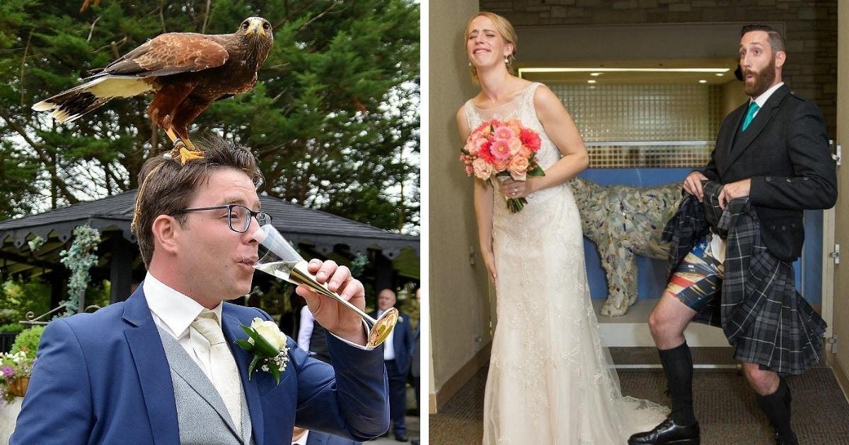 17 крайне забавных фотографий со свадеб, которые доказывают, что там может произойти всё что угодно