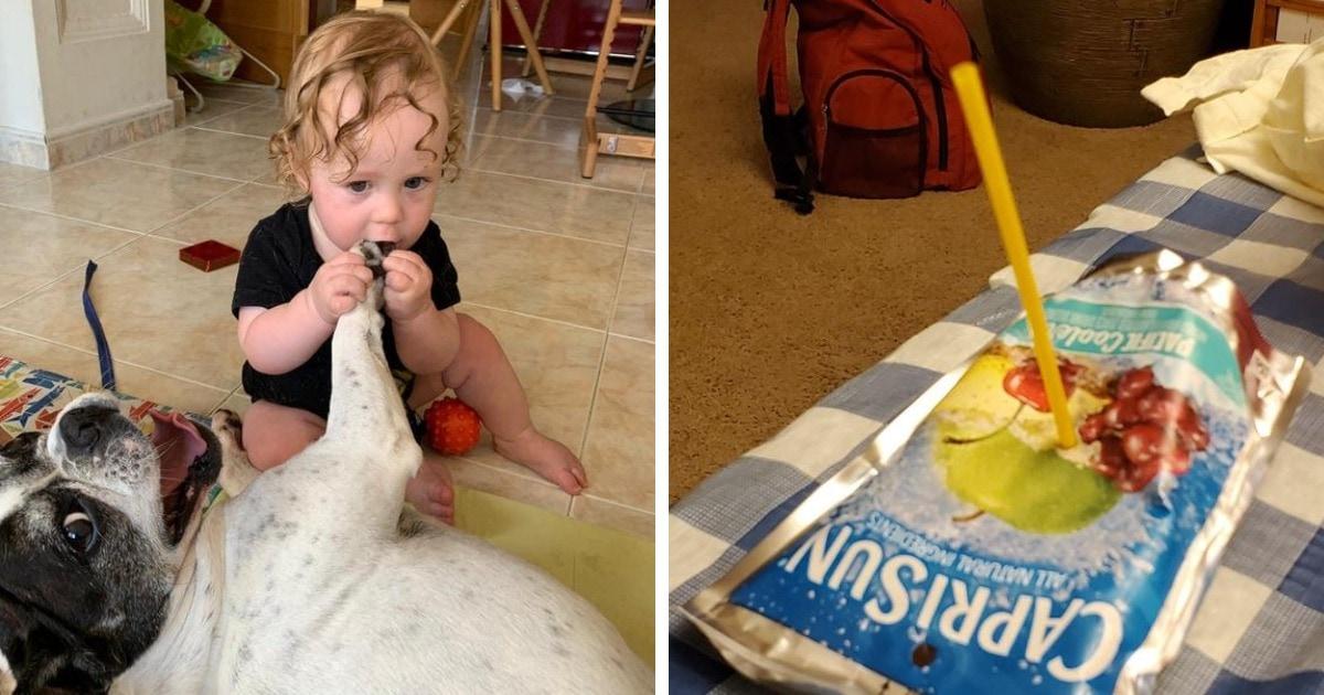 16 смешных фото о том, что взрослые не понимают детскую логику, но искренне от неё веселятся