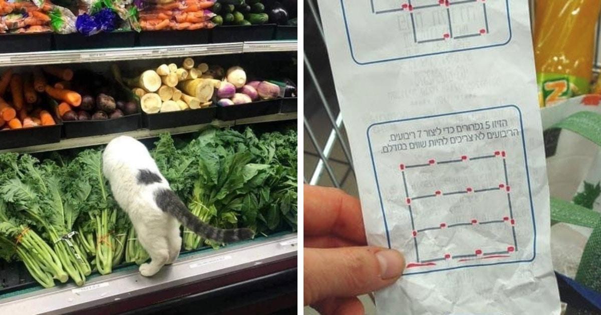 17 фото, которые доказывают, что даже когда просто идёшь в магазин, можно заметить массу интересного